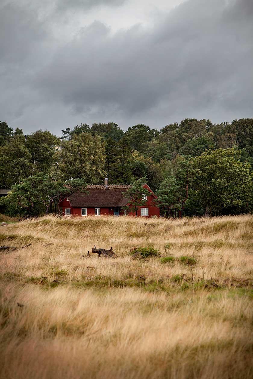 Hallandslänga, Grimsholmen