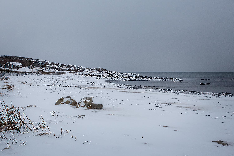 Vinter Steningestrand